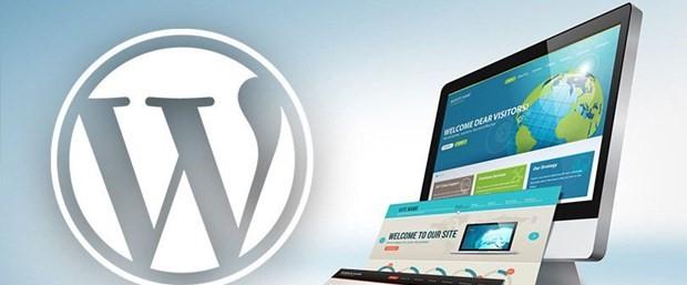 WordPress Tema Seçiminde Dikkat Edilmesi Gerekenler?