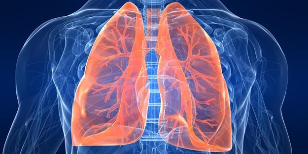 Akciğeri Temizleyen Şifalı Besinler